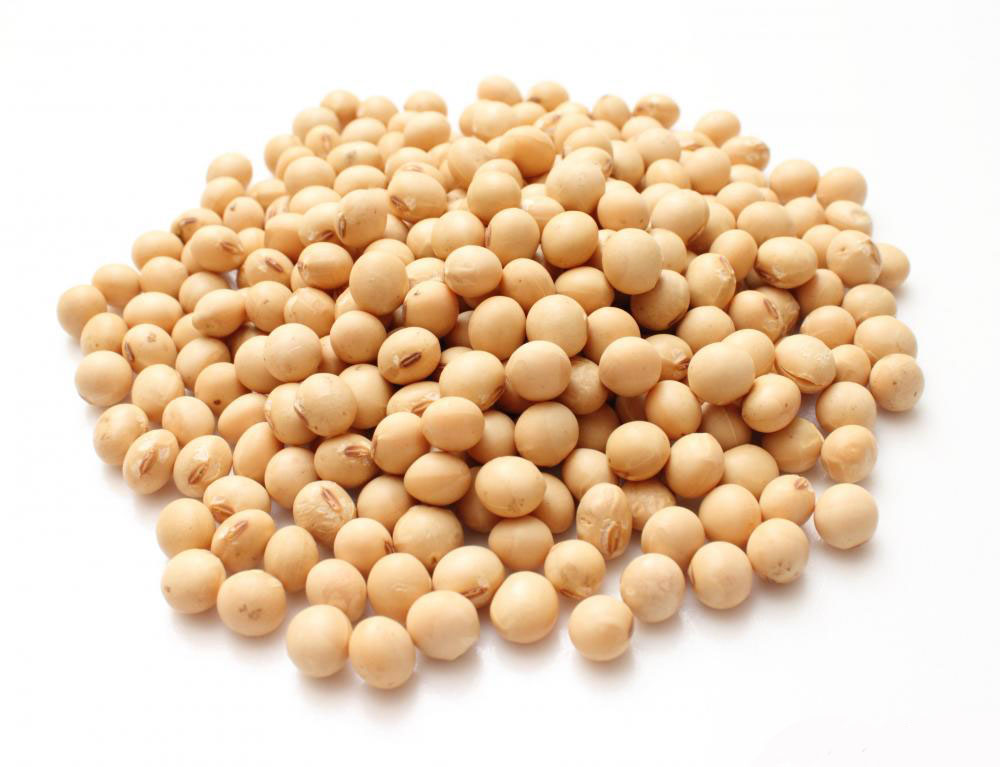soybeans are a source of alpha-gpc