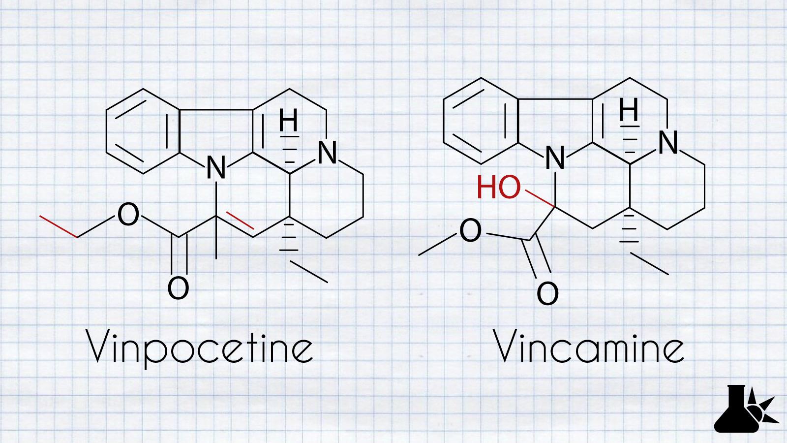 vinpocetine vs vincamide