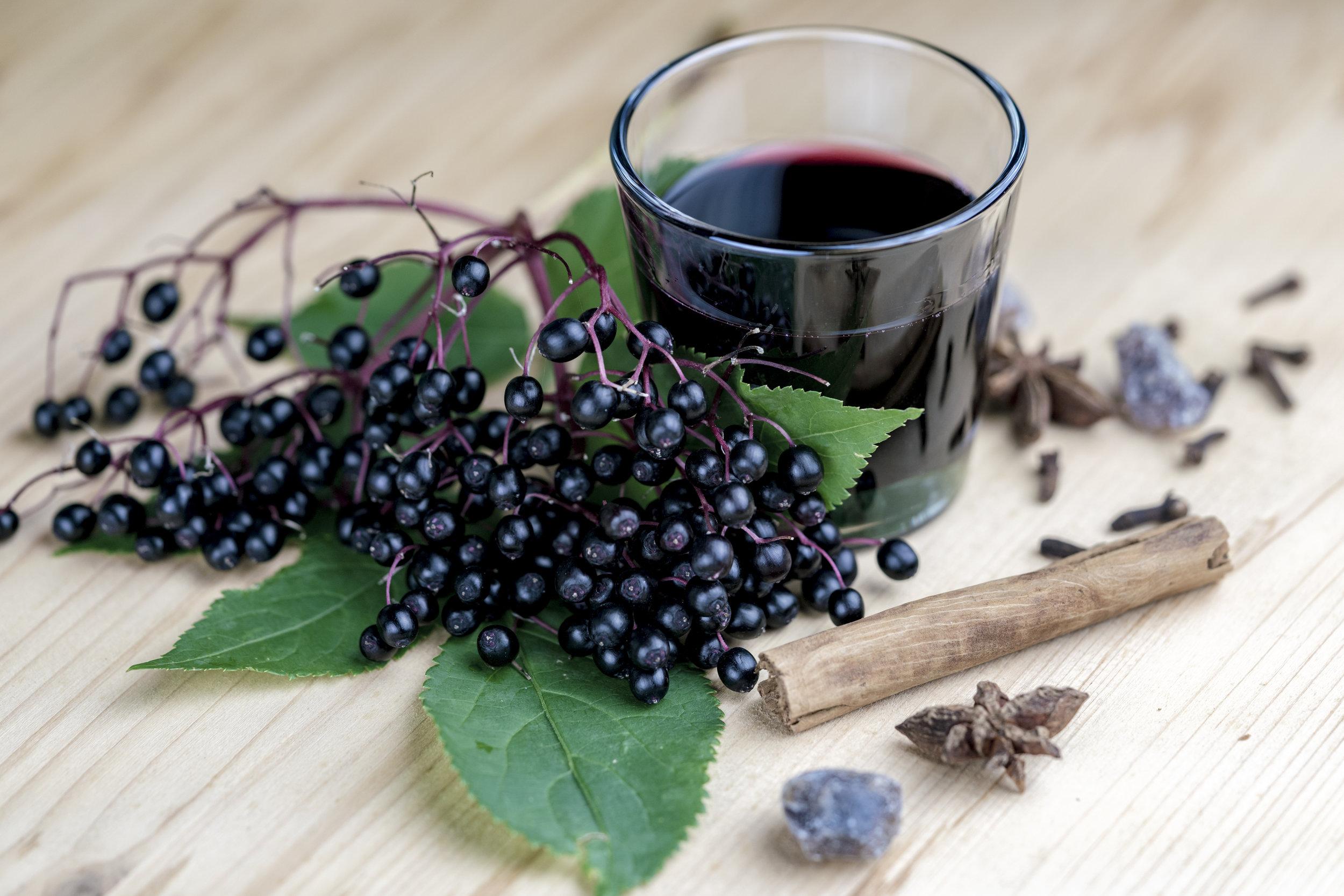 elderberry extract.jpeg