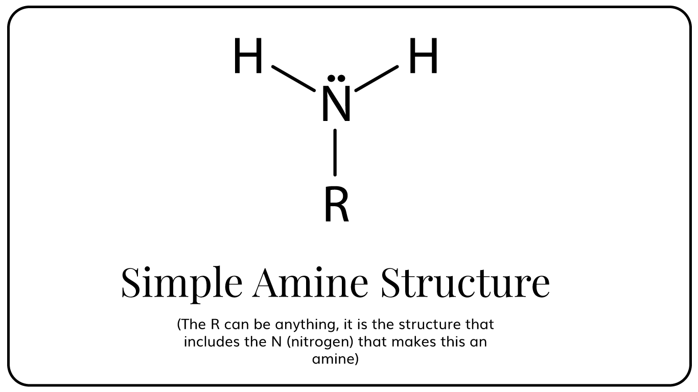 simple-amine-structure.png