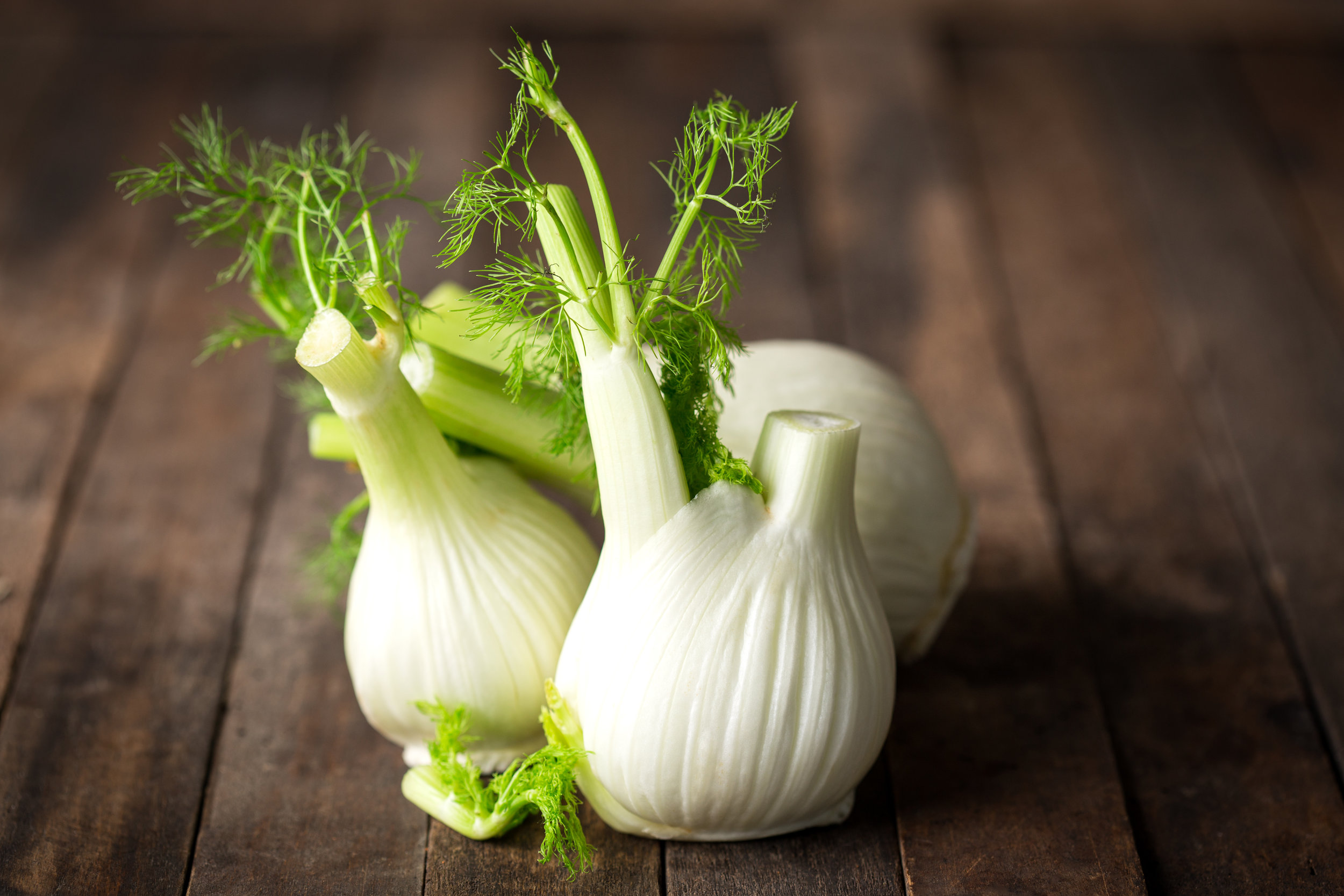 culinary applications of fennel.jpeg