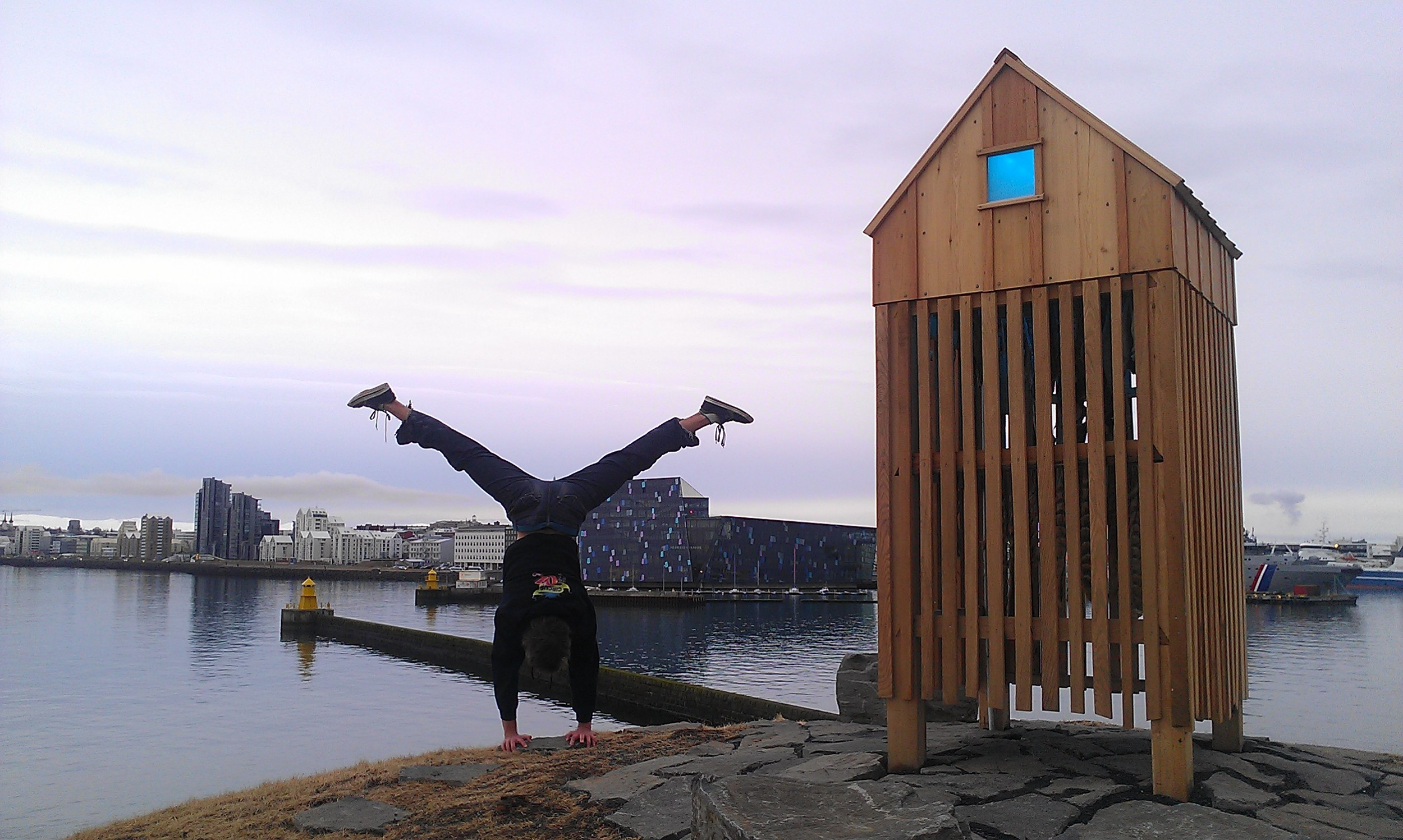 Admiring the public art in Reykjavic:  Þúfa by Ólöf Nordal, with the beautiful Harpa facade, designed by Olafur Eliasson in the background.