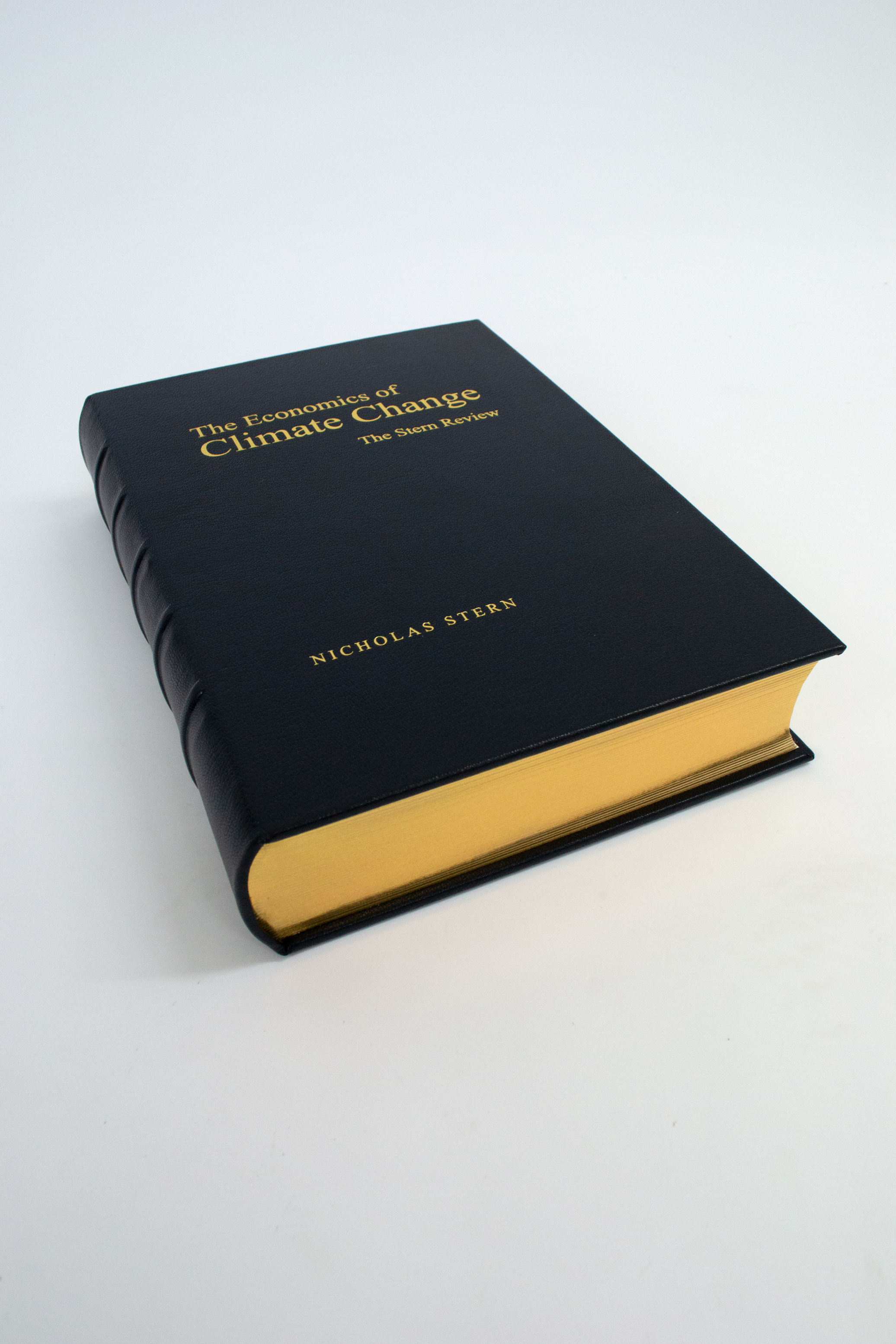 Leather bound book - The Economics of Climate Change