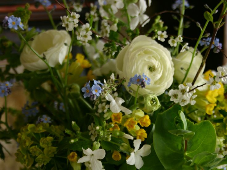 by Common Farm Flowers