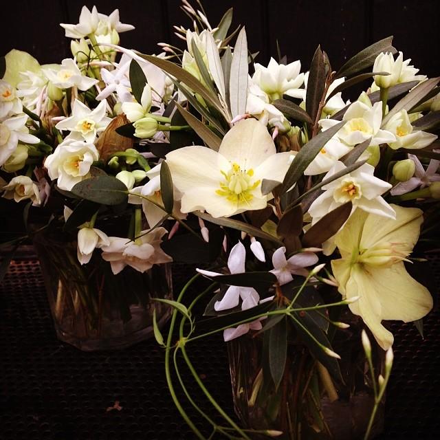 by Thomas Broom - the Florist