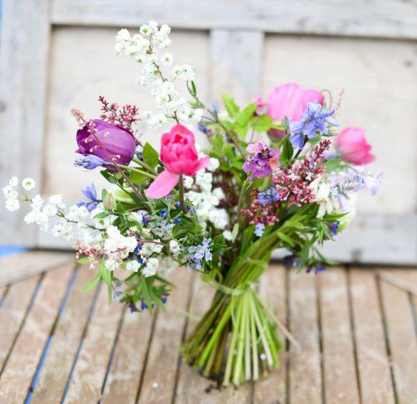 Shelsley Herbs and Flowers