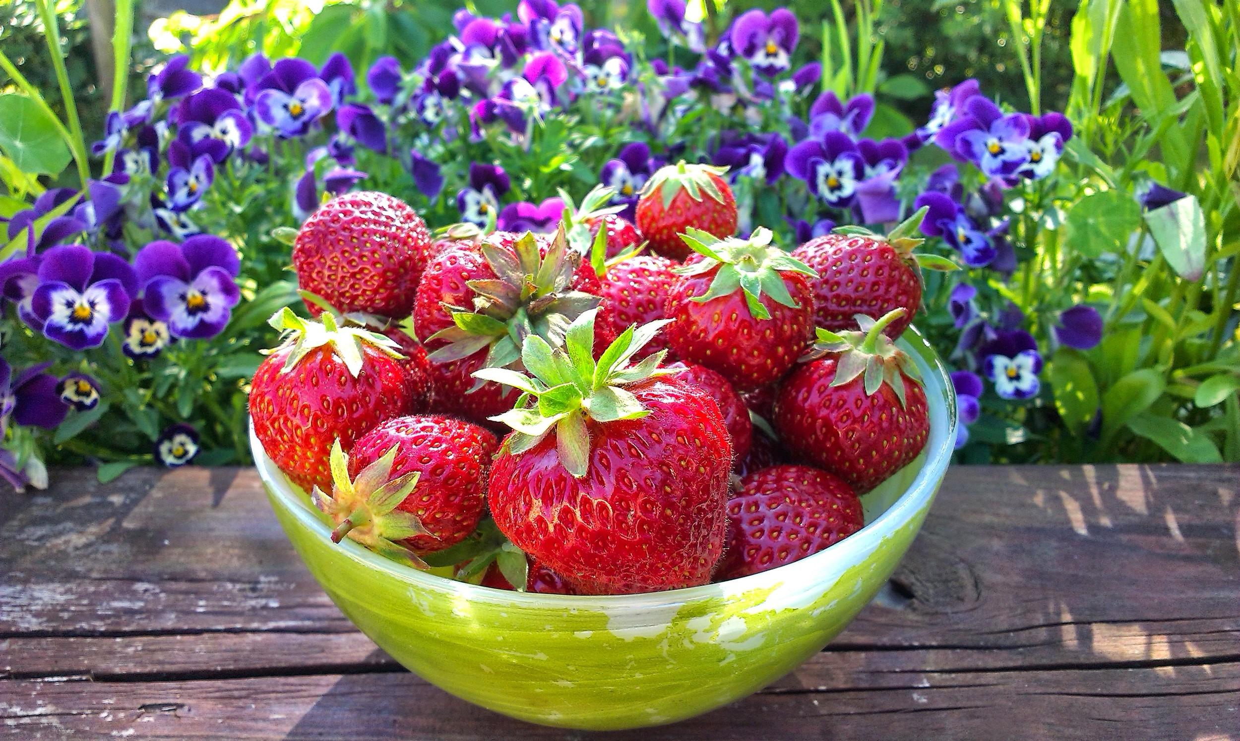 Årets første jordbær!
