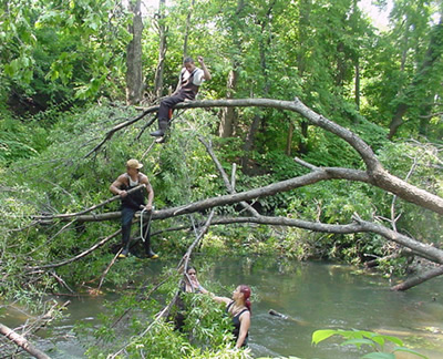 Clearing the Bronx River