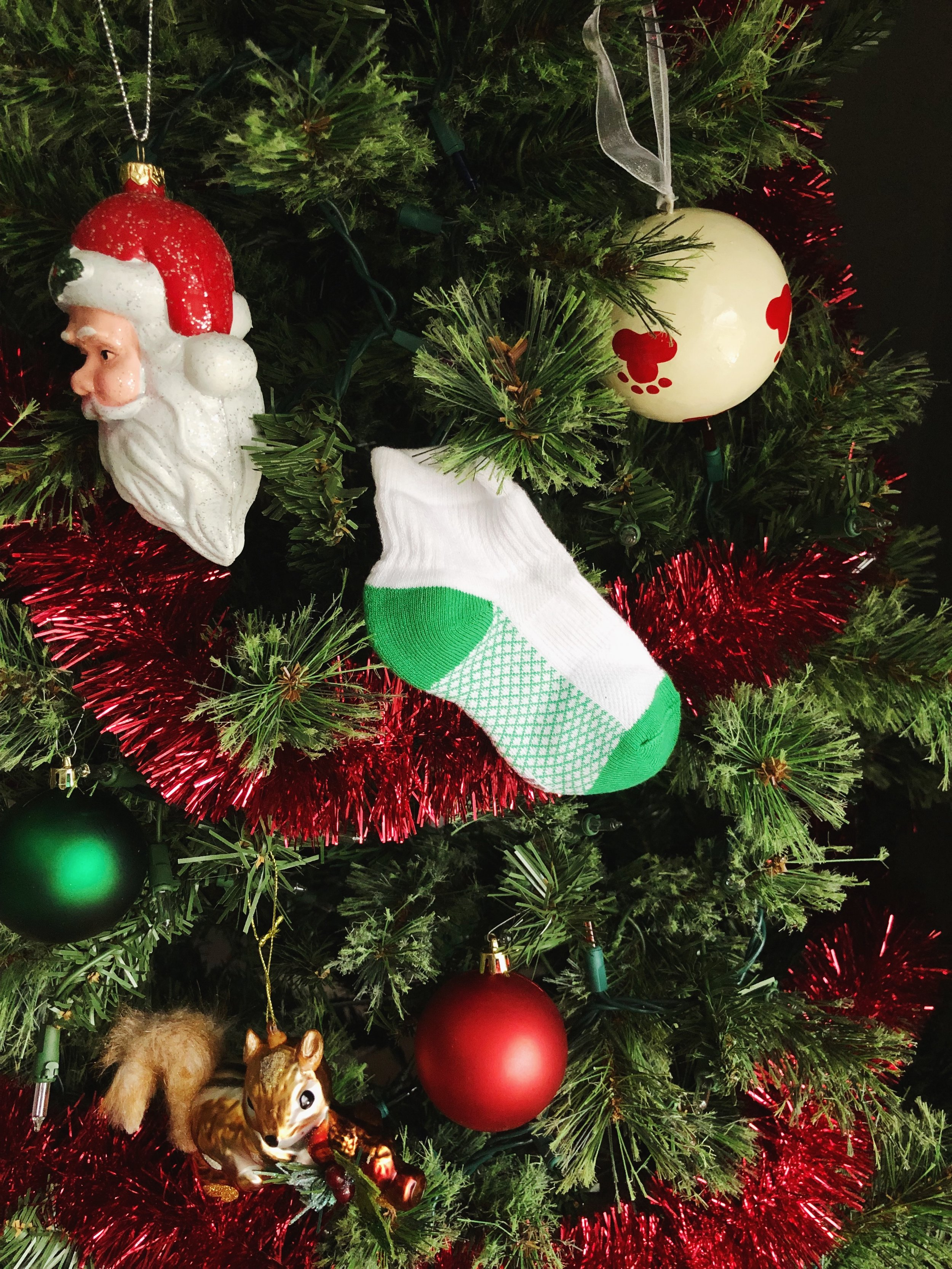 christmas-tree-for-dogs.jpg