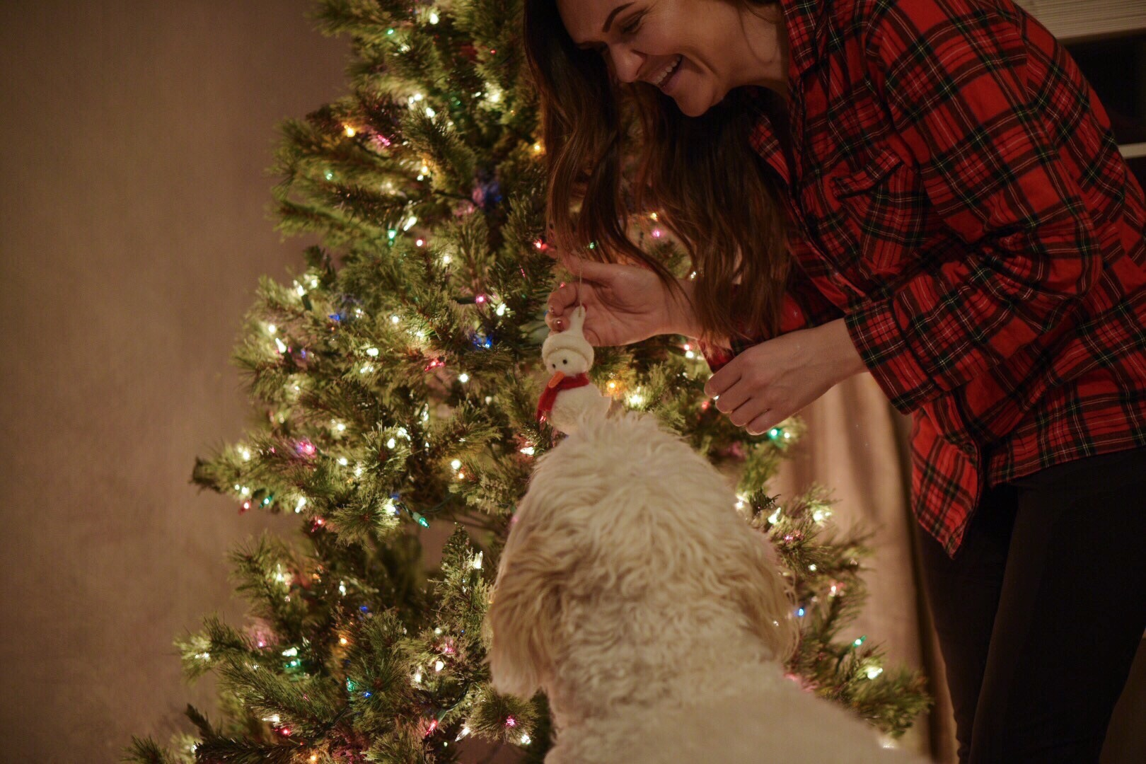christmas-tree-decorating-with-dog.jpg