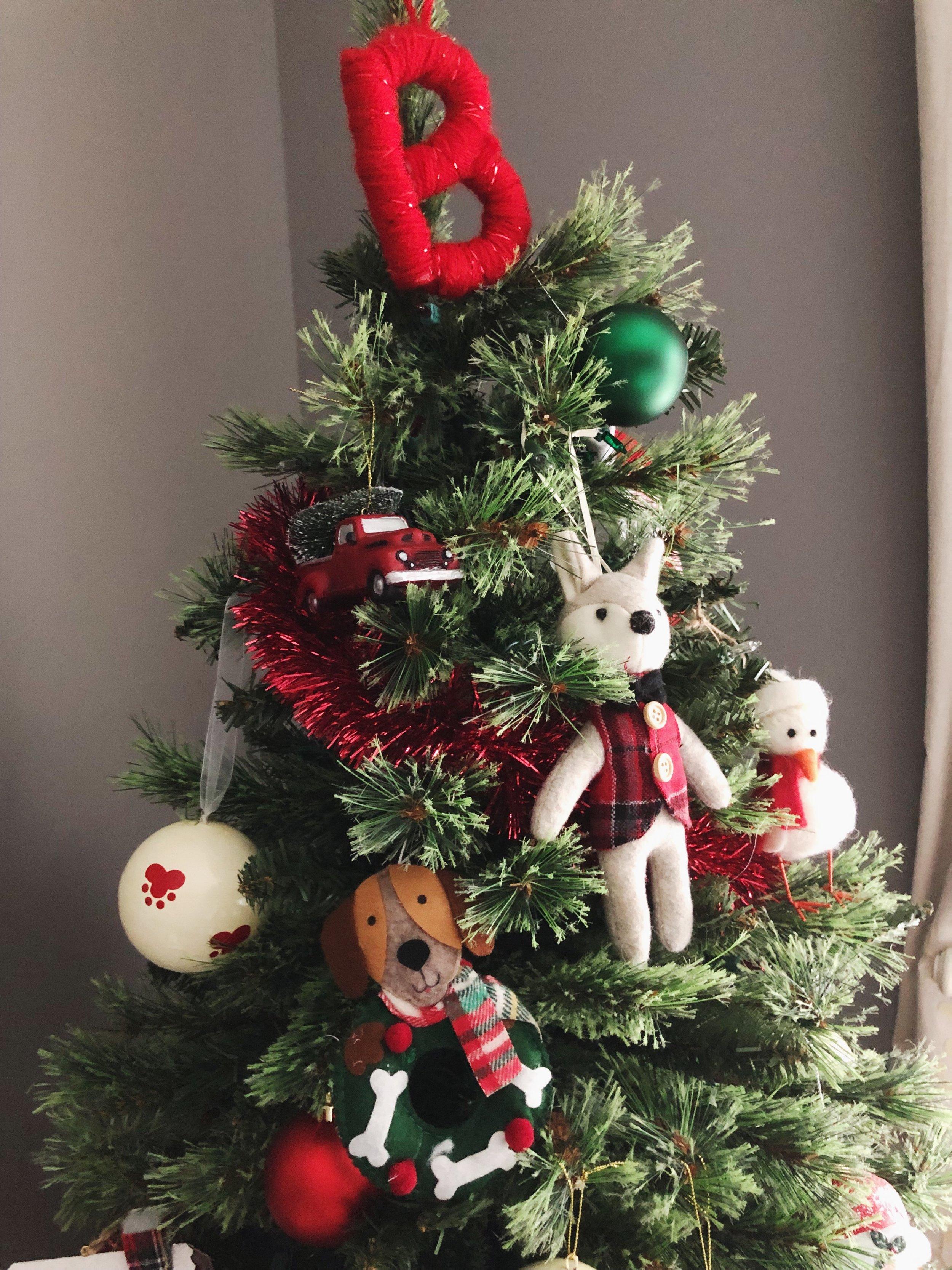 dog-christmas-trees.jpg