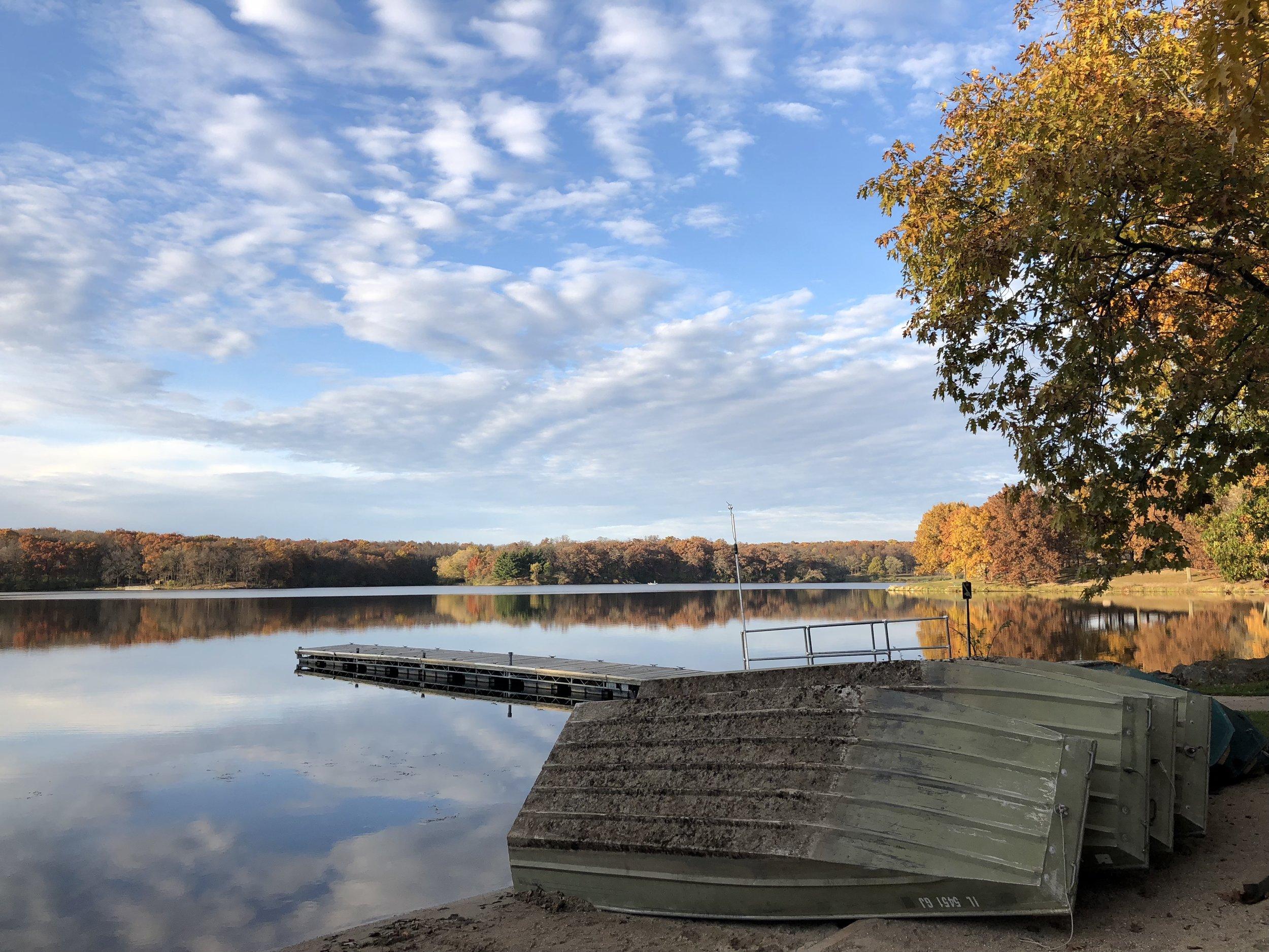 fall-leaves.jpg