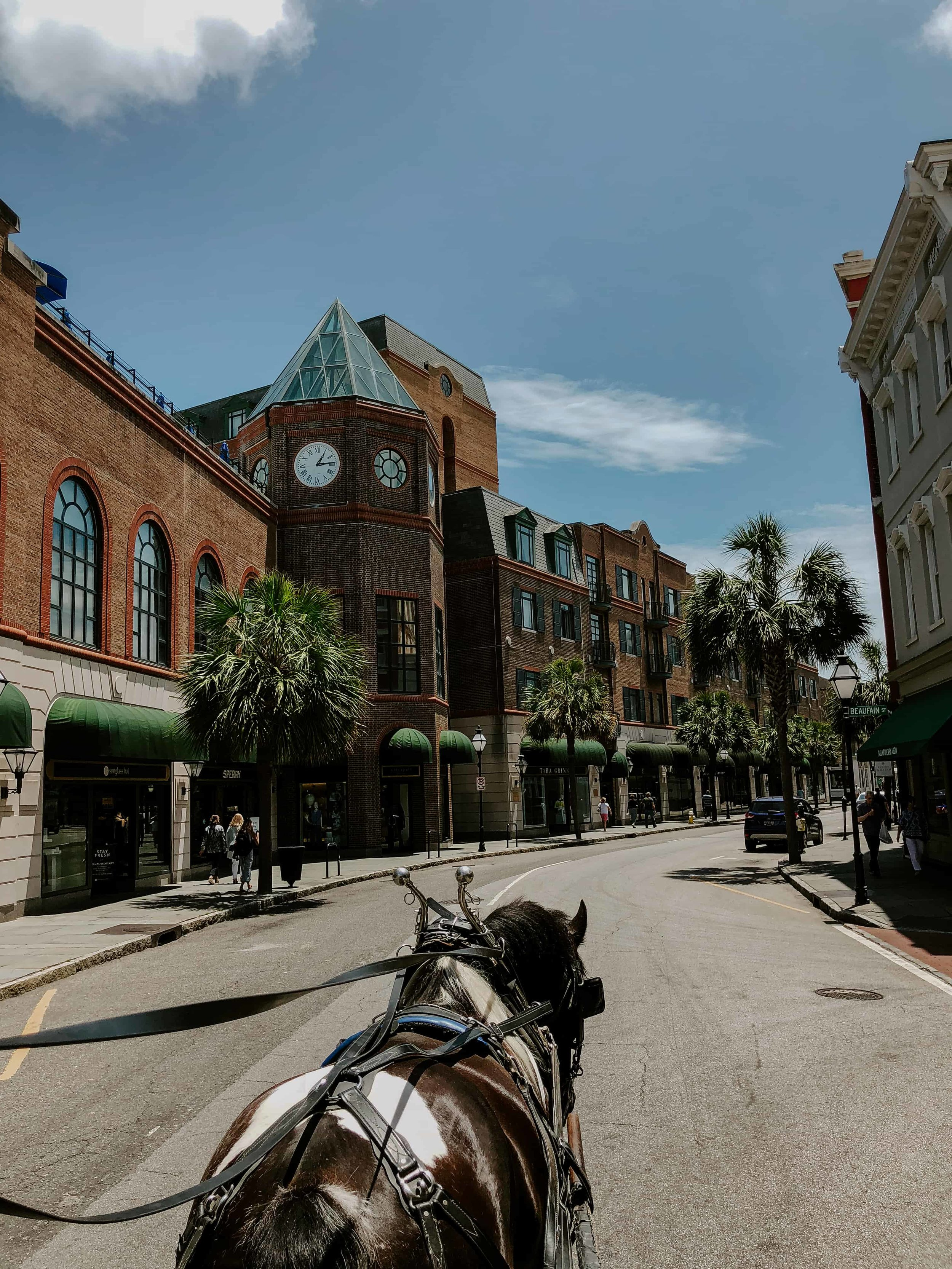charleston-sc-city-guide-what-to-do-and-see-70.jpg
