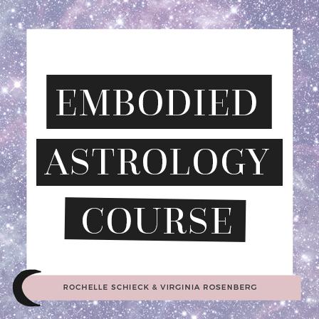 Virginia_Rosenberg-Rochelle_Schiek-Embodied_Astro_Course