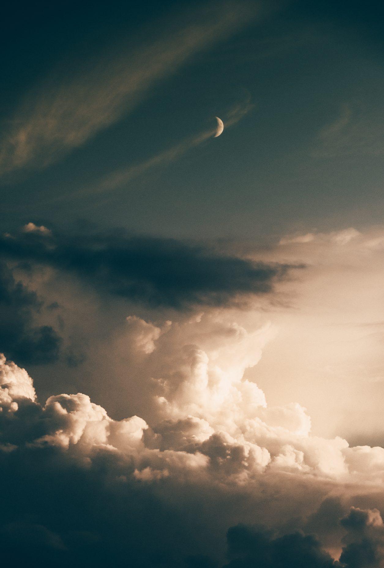 Virginia-Rosenberg-Rising-Woman-New-Moon-Scorpio.jpg