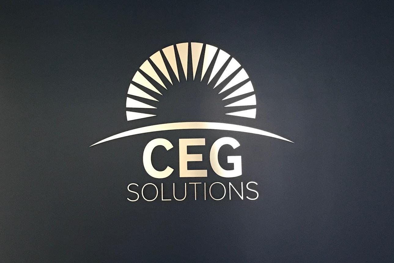 42389_CEG Solutiions.JPG