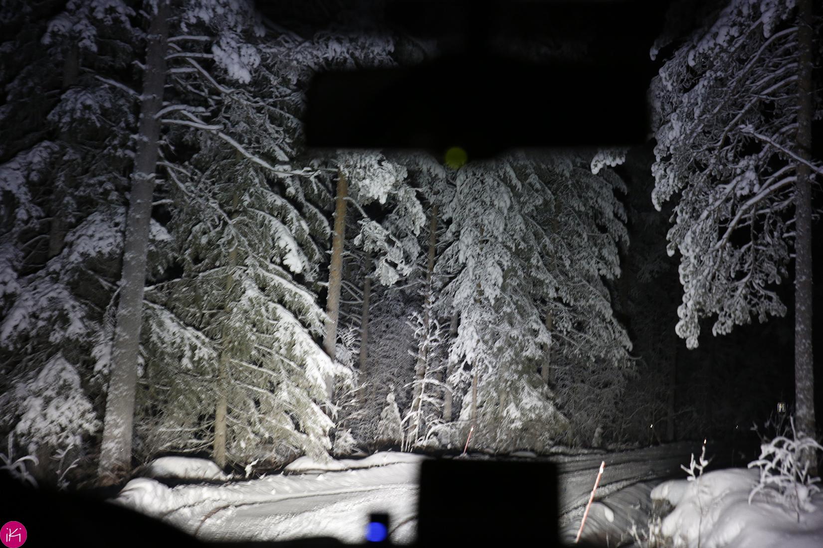 landschap by night