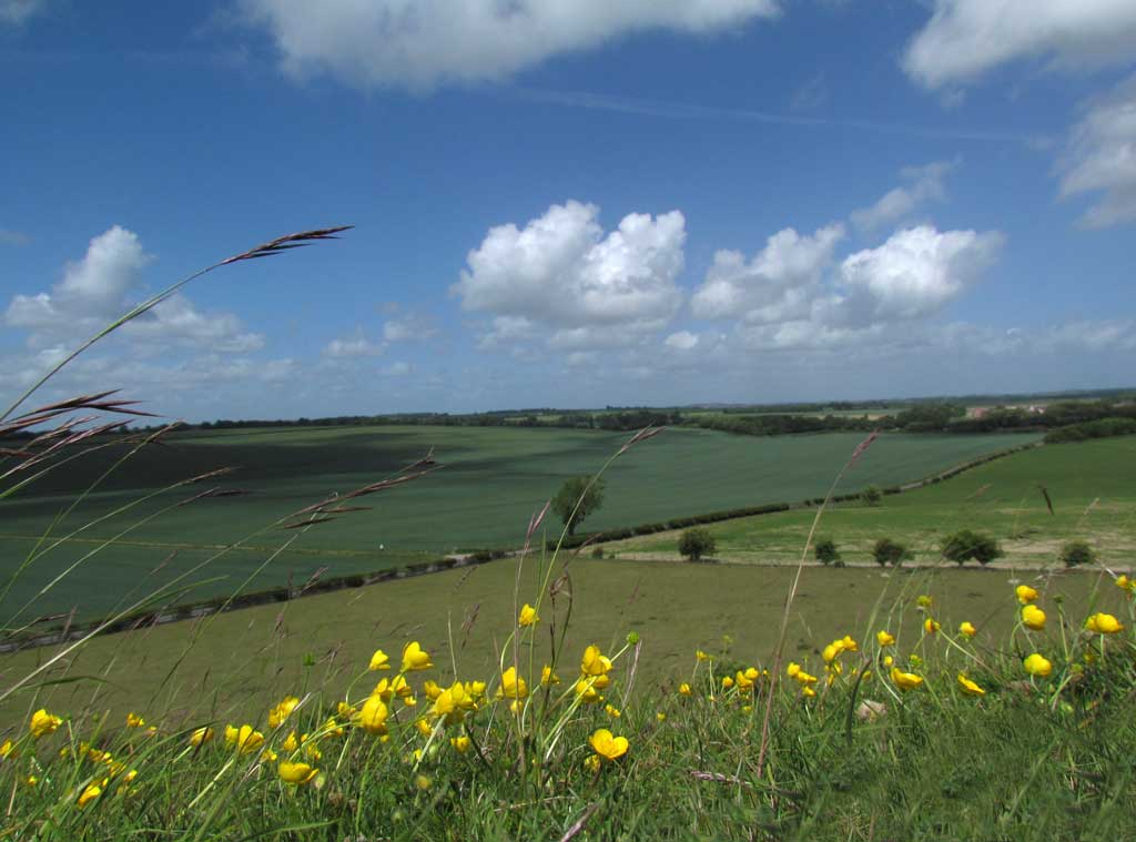 View from Old Sarum by Robin Gemmill