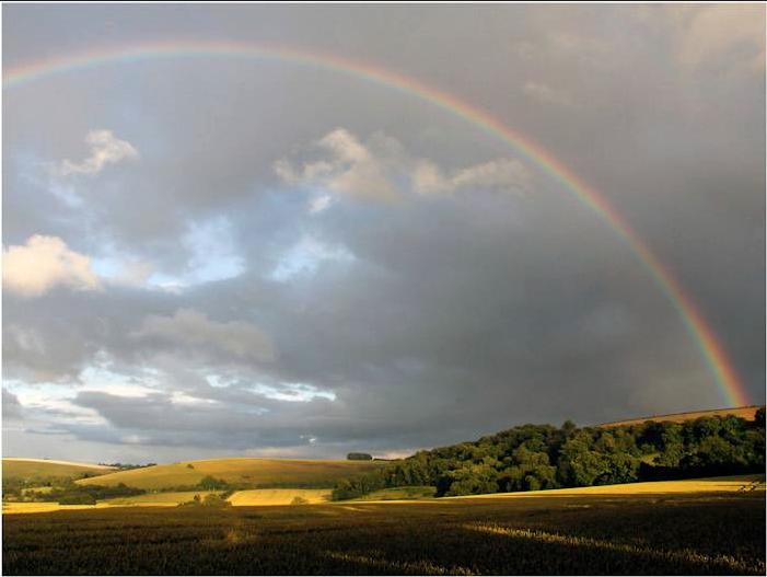 Wiltshire Rainbow by Author Price £00.00