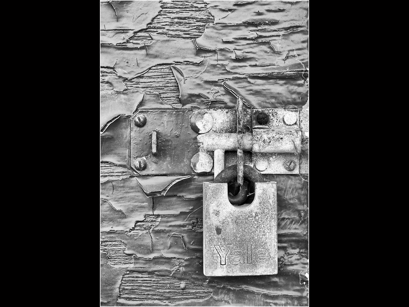 Flaking Door by Tony Oliver