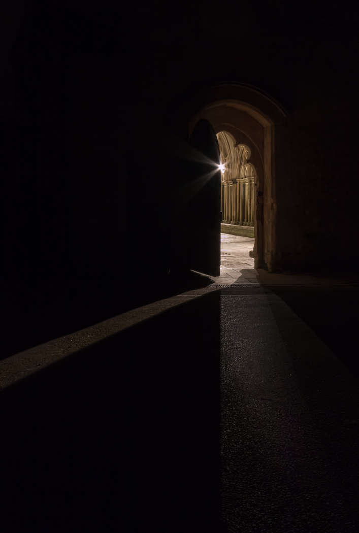 Open to the Light by John Barton