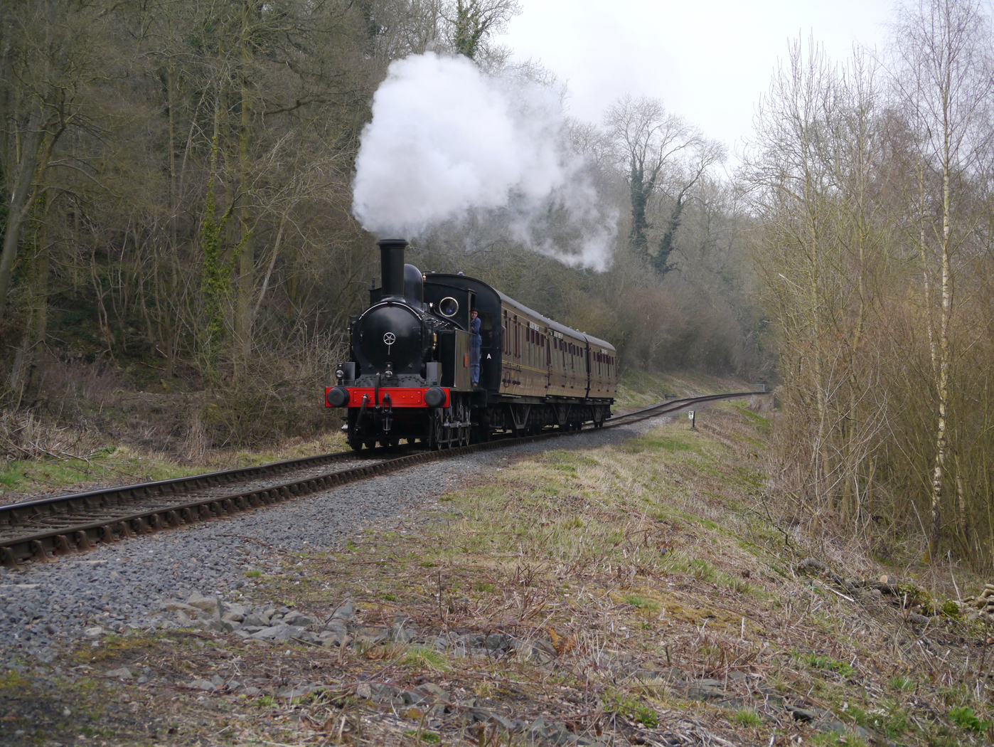 Severn Valley Train 3