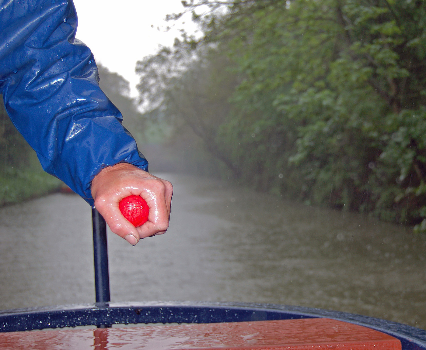 'In the Rain' by Jo Horscroft