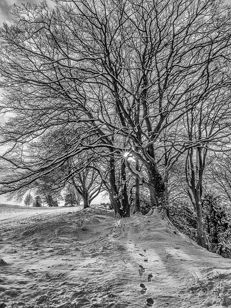 First 'Snow tracks Old Sarum' by Mark Cooper