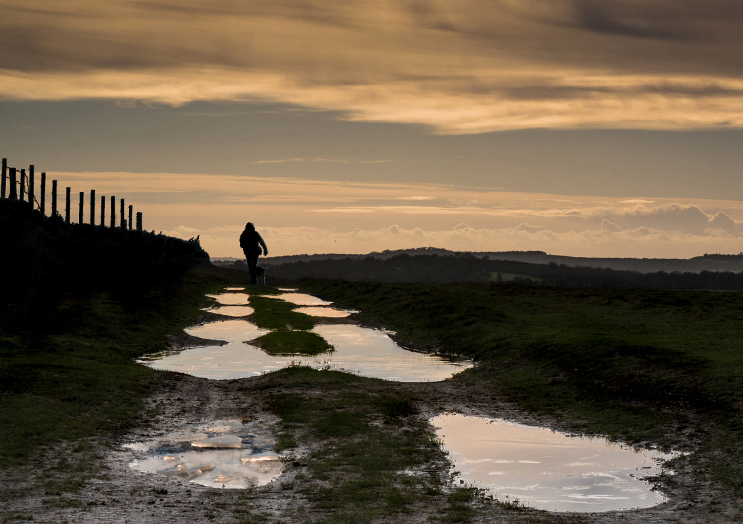 'Dog Walker' by Ian Porter