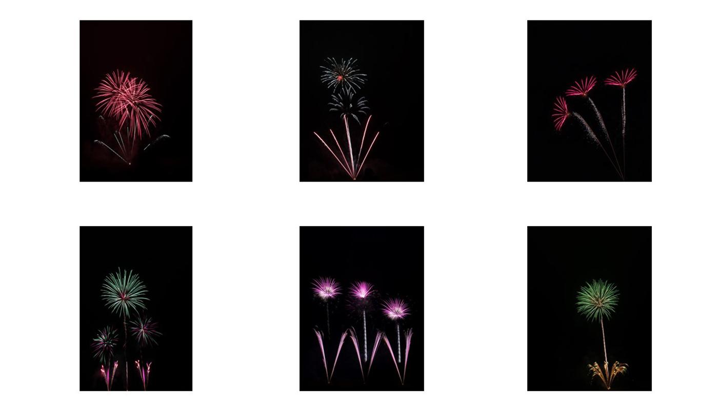 First 'Firework Flowers' by Rob Lanham