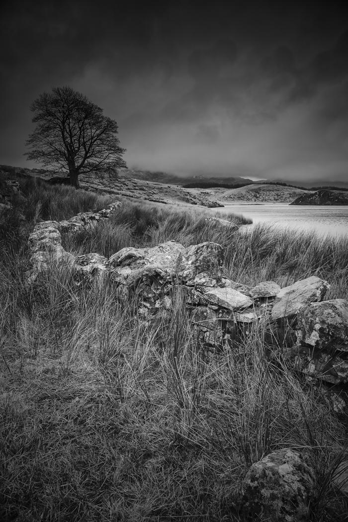 Third ' The Wall' by John Barton
