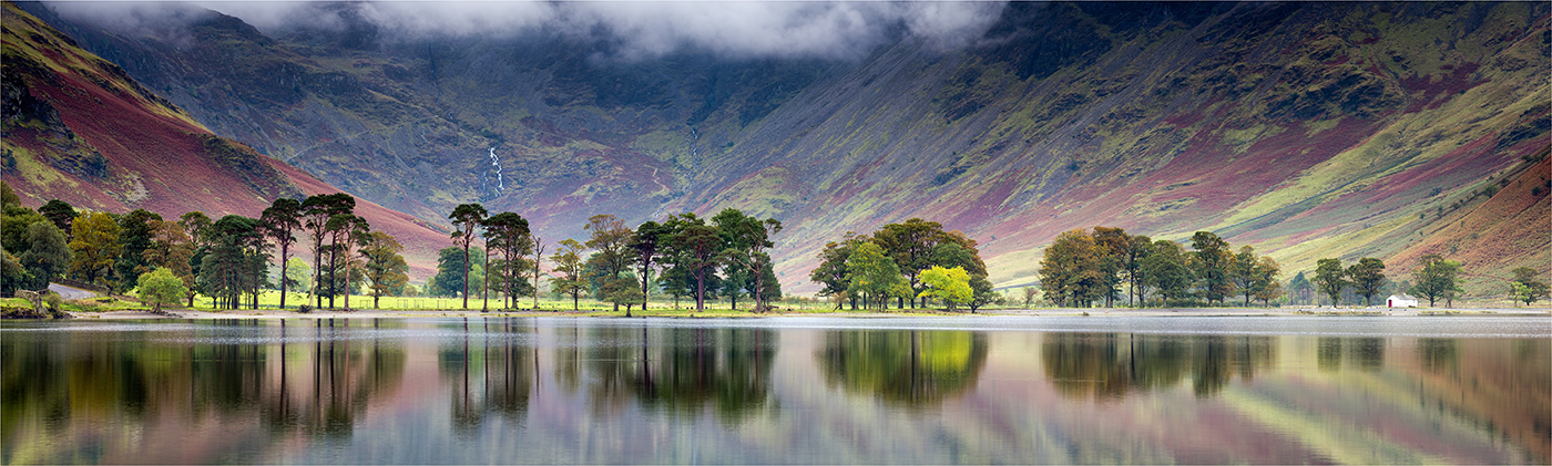 Second 'Buttermere Pines' by John Barton