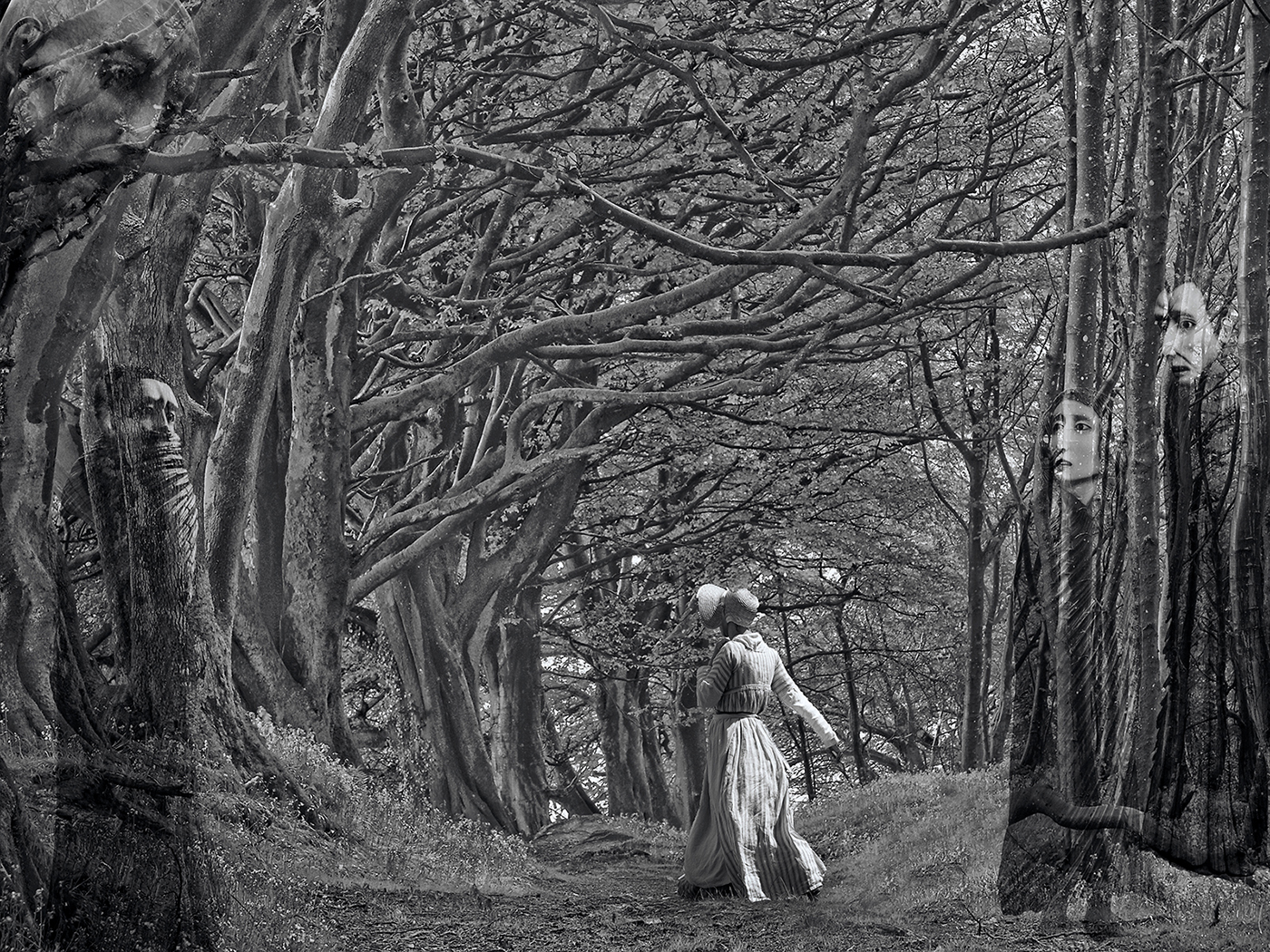 Second 'The watchers in the wood' by Tony Oliver