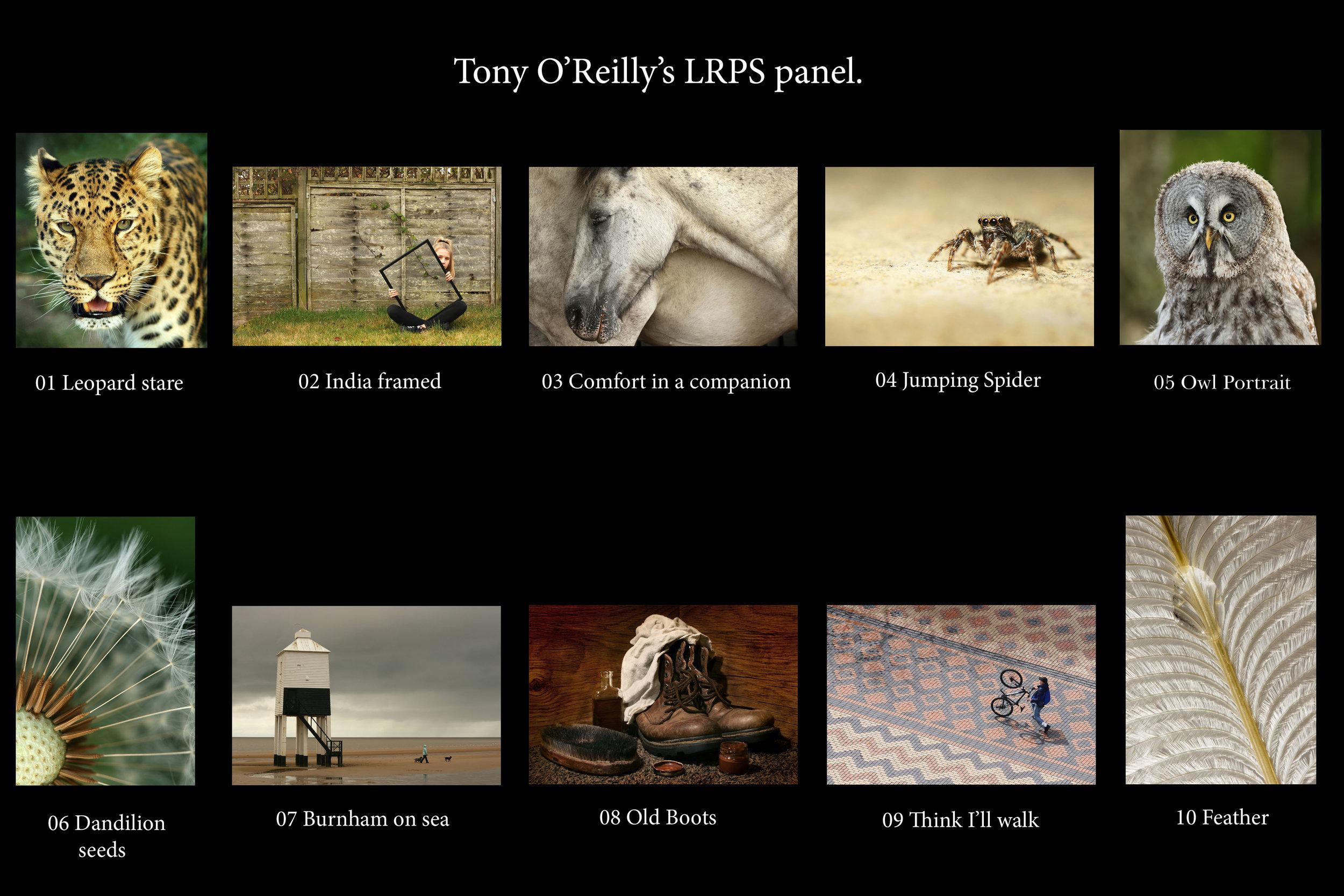 Tony O'Reilly's LRPS panel 72 dpi.jpg