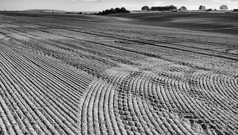 'Patterns of Farming' by Michael Hillier