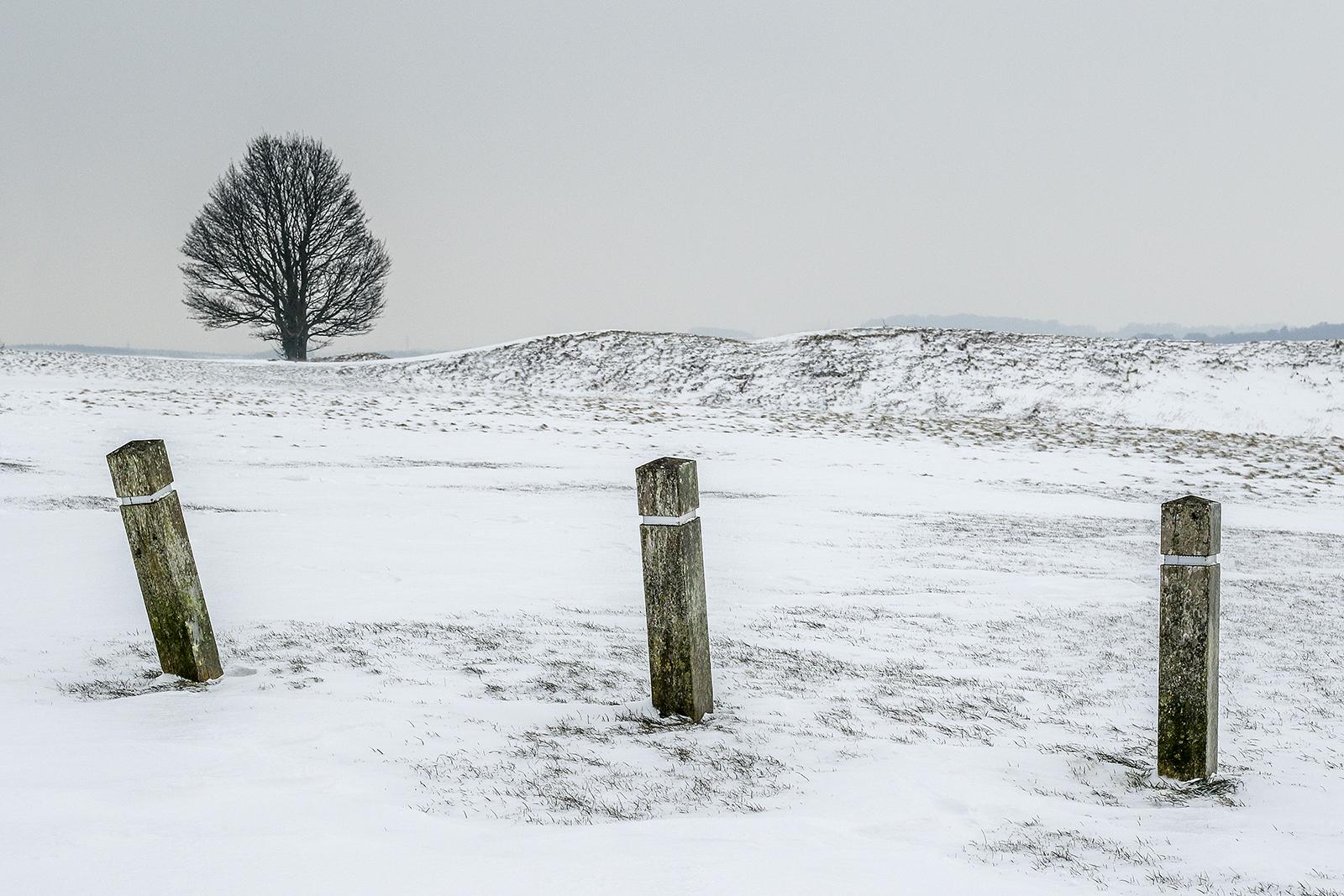 'A Winter Scene' by Tony O'Reilly