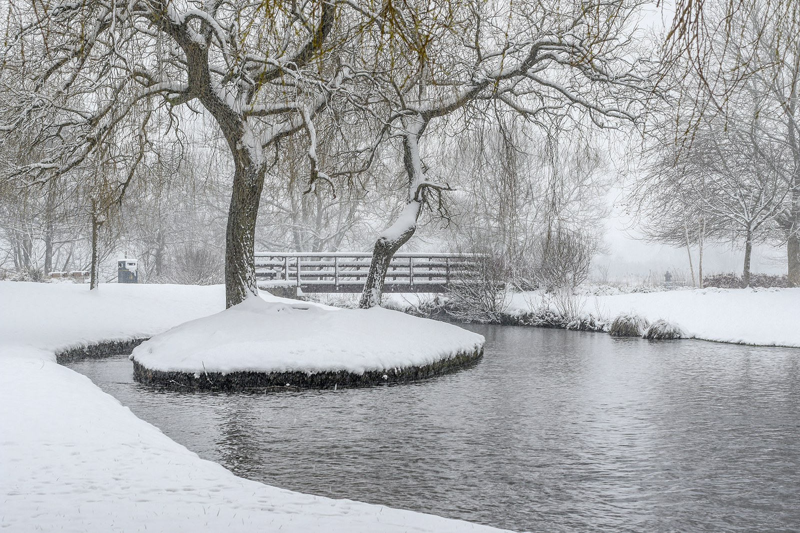 'Snow in the park' by Tony O'Reilly
