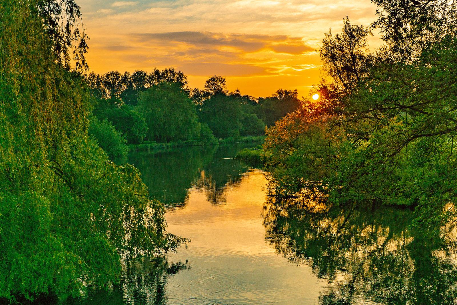 'Woodford Sunrise' by Terry Waldren