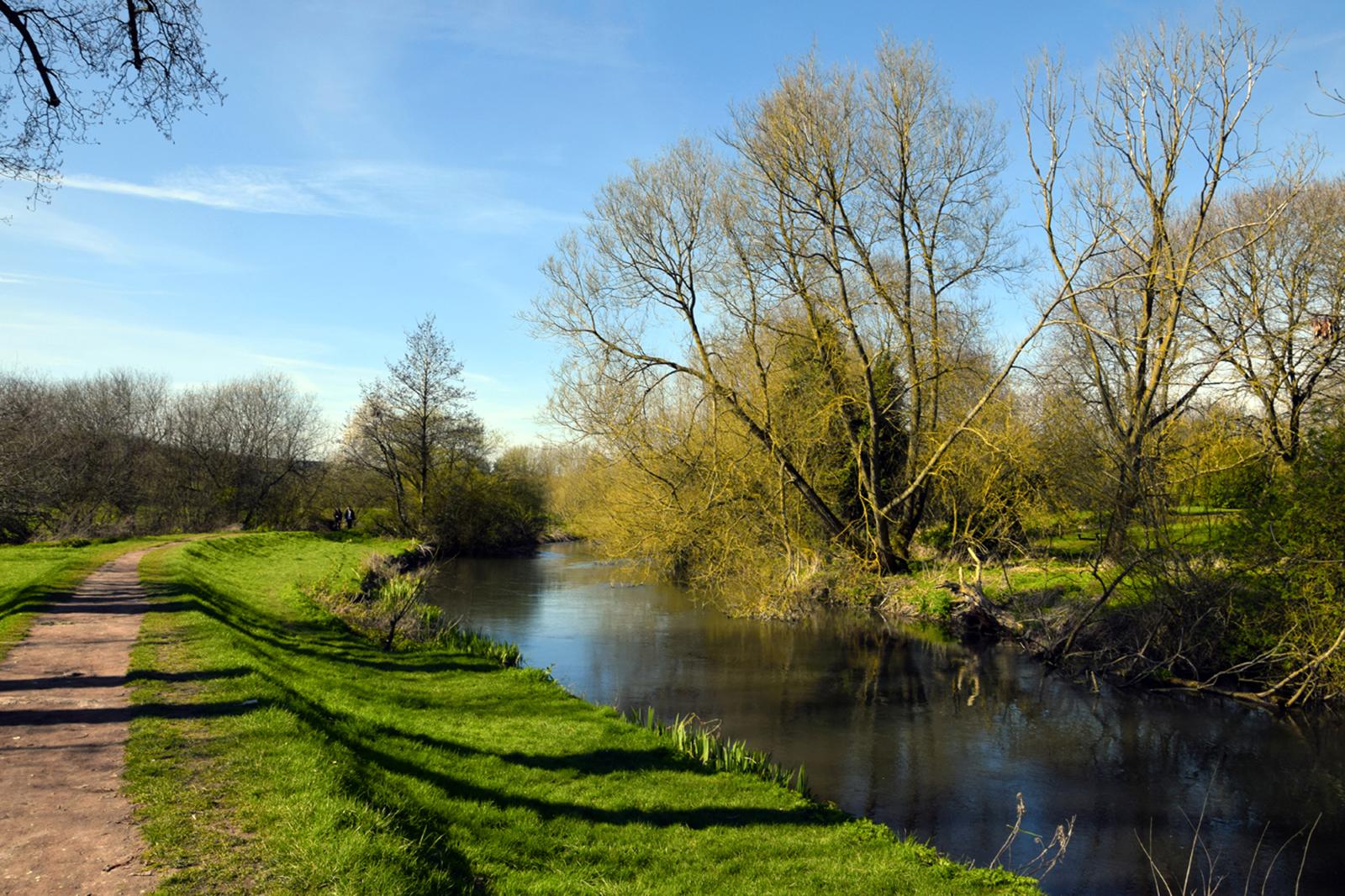 'River Avon' by Louise Topp
