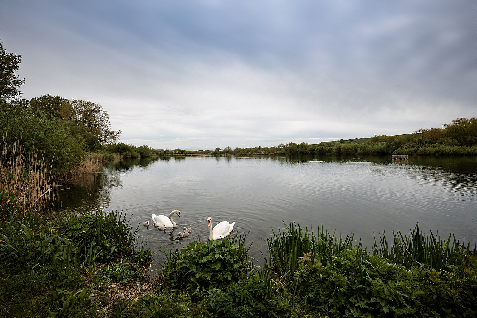 'Langford Lakes' by Shaun Duke