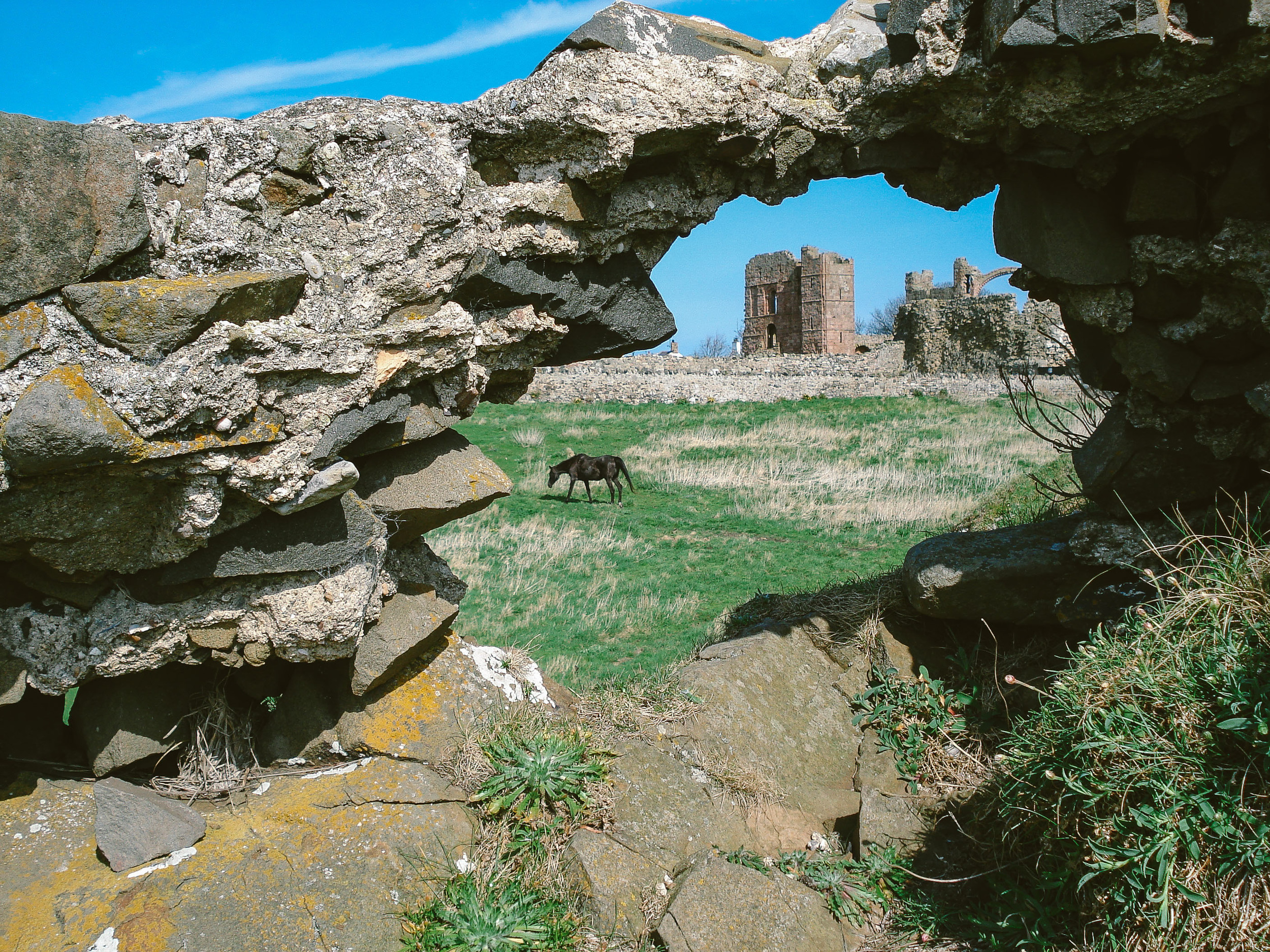 Holy Island is a great location for a history or nature lover to get married