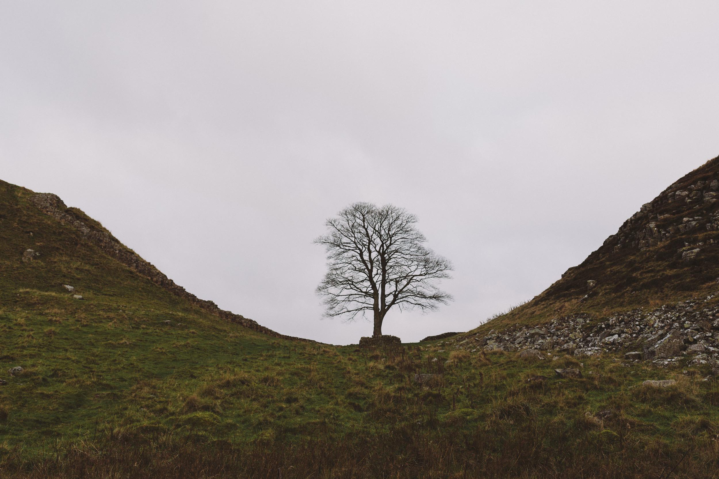 Scouting Northumberland Hadrian's Wall & Druridge Bay-0018.jpg