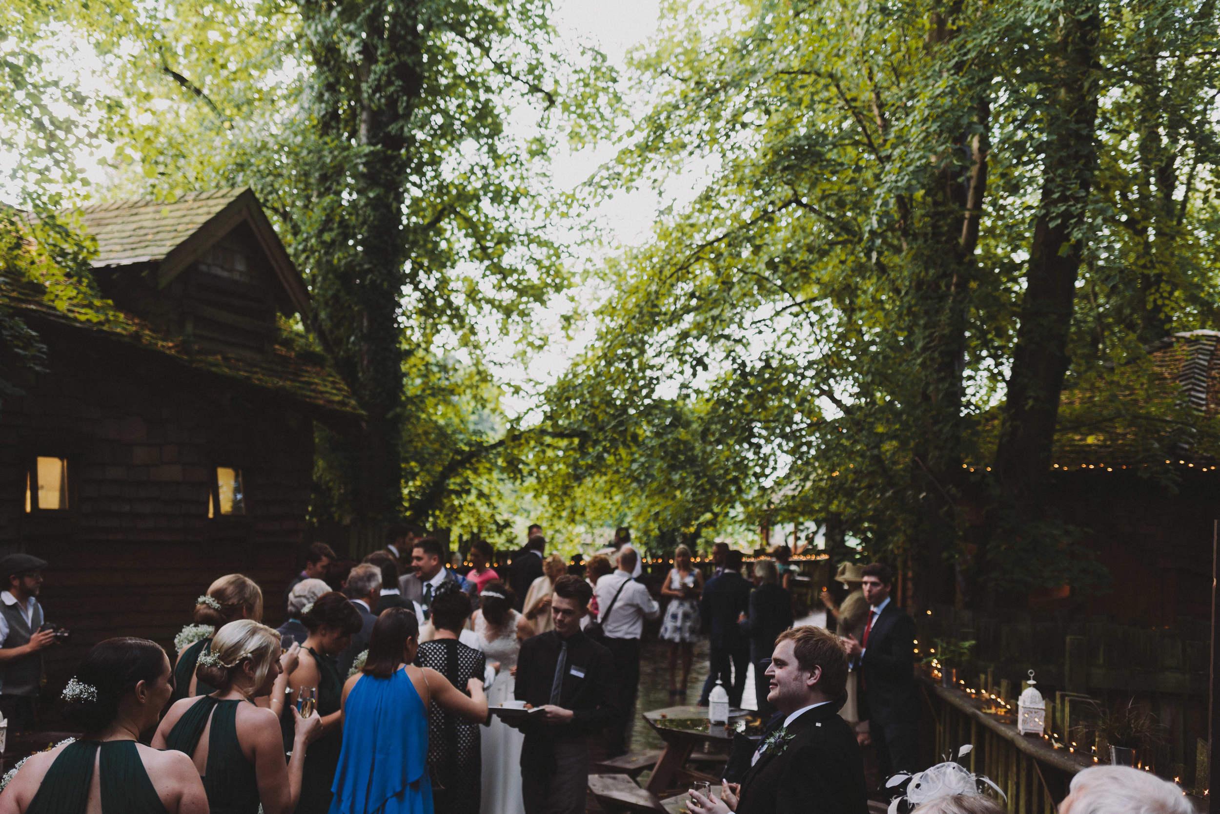 Alnwick Garden Treehouse Walkways