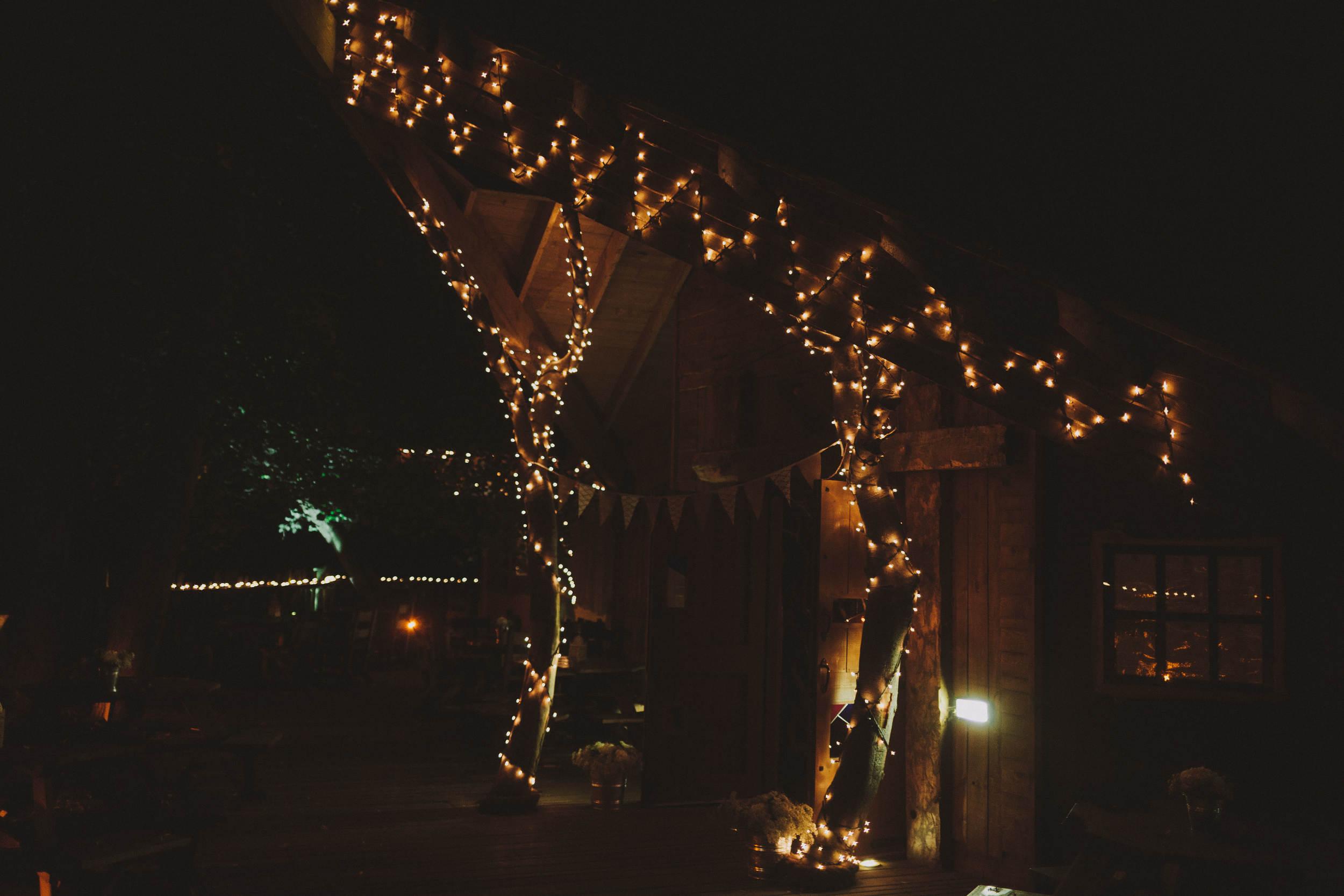 Alnwick Garden Treehouse Lights at night
