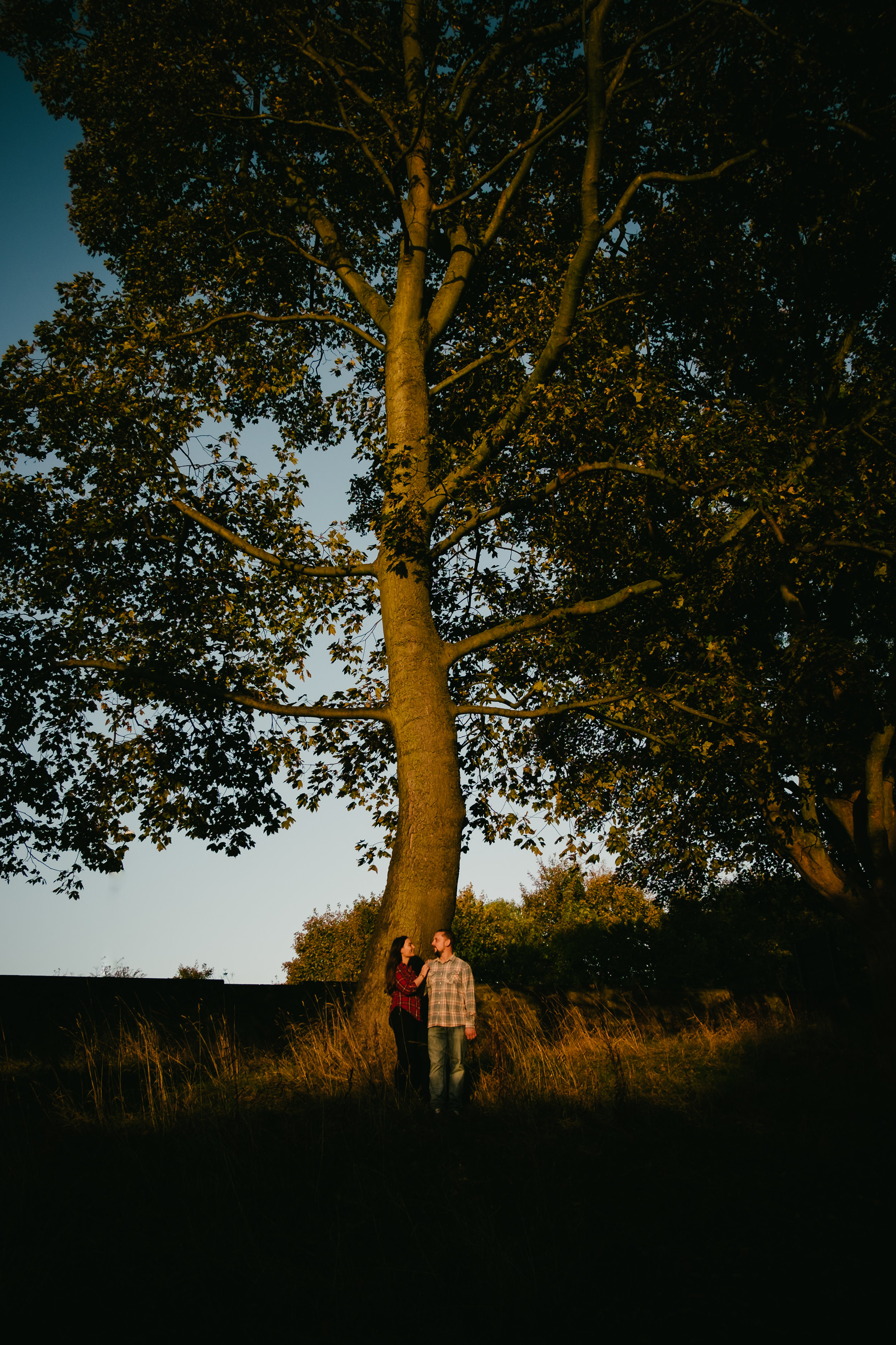 Jen and Joe stand at the foot of a large tree bathed in warm autumn light at Hylton Castle Sunderland on their pre-wedding photo shoot