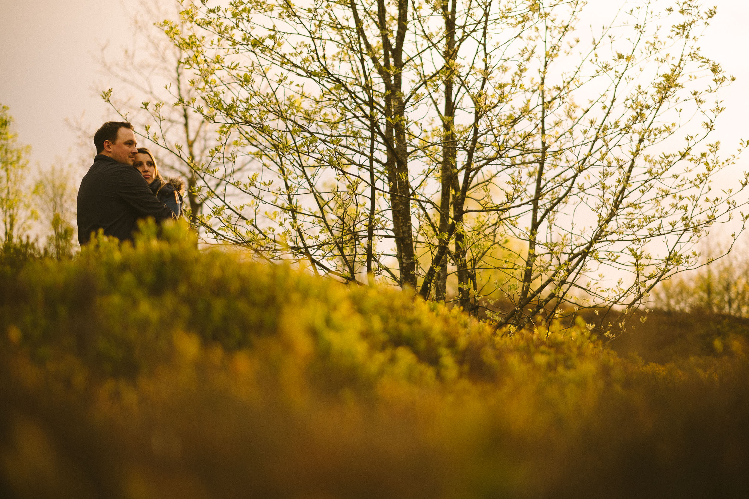 Couple embrace in warm light washing over green vegetation