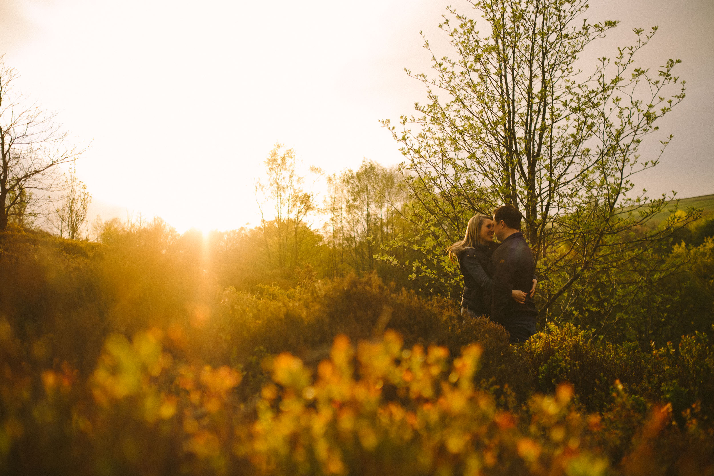 Couple cuddling in undergrowth near tree with the sun shining