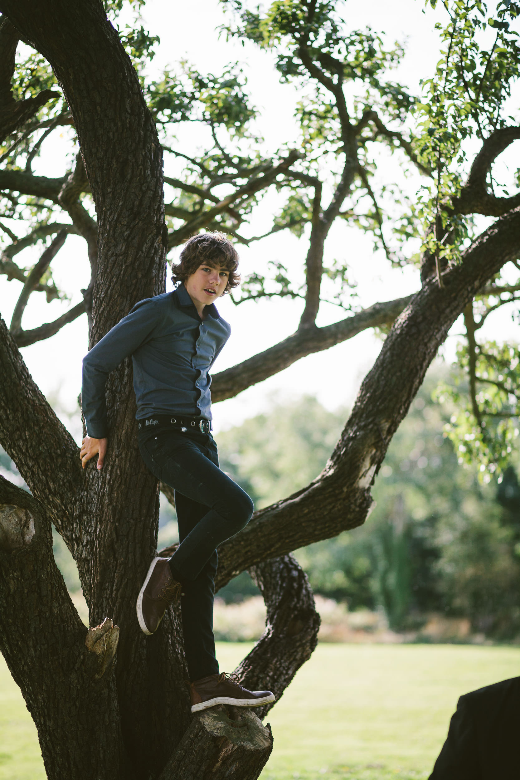 Young wedding guest climbs tree