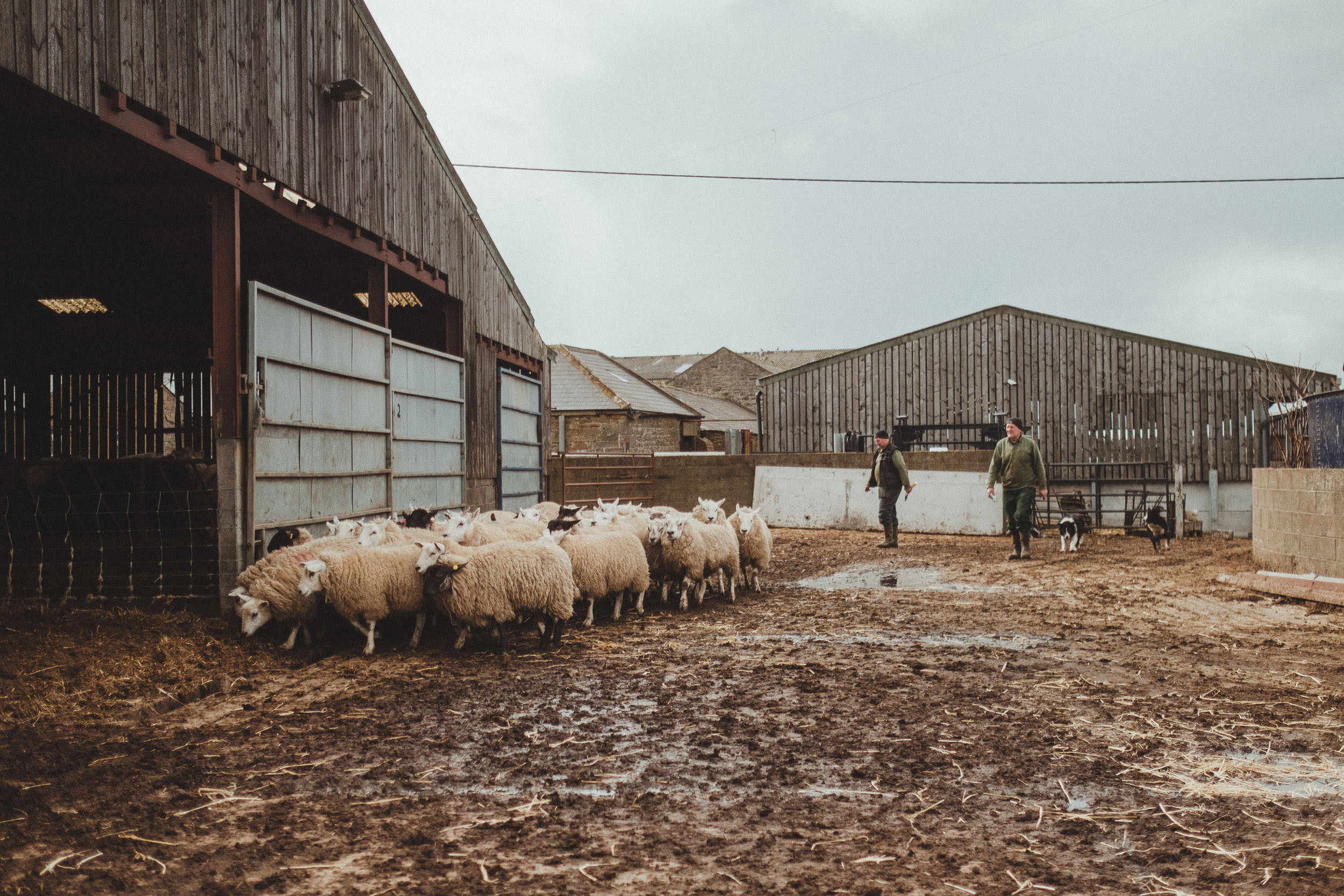 Barn on the Bay Northumberland wedding venue-0005.jpg