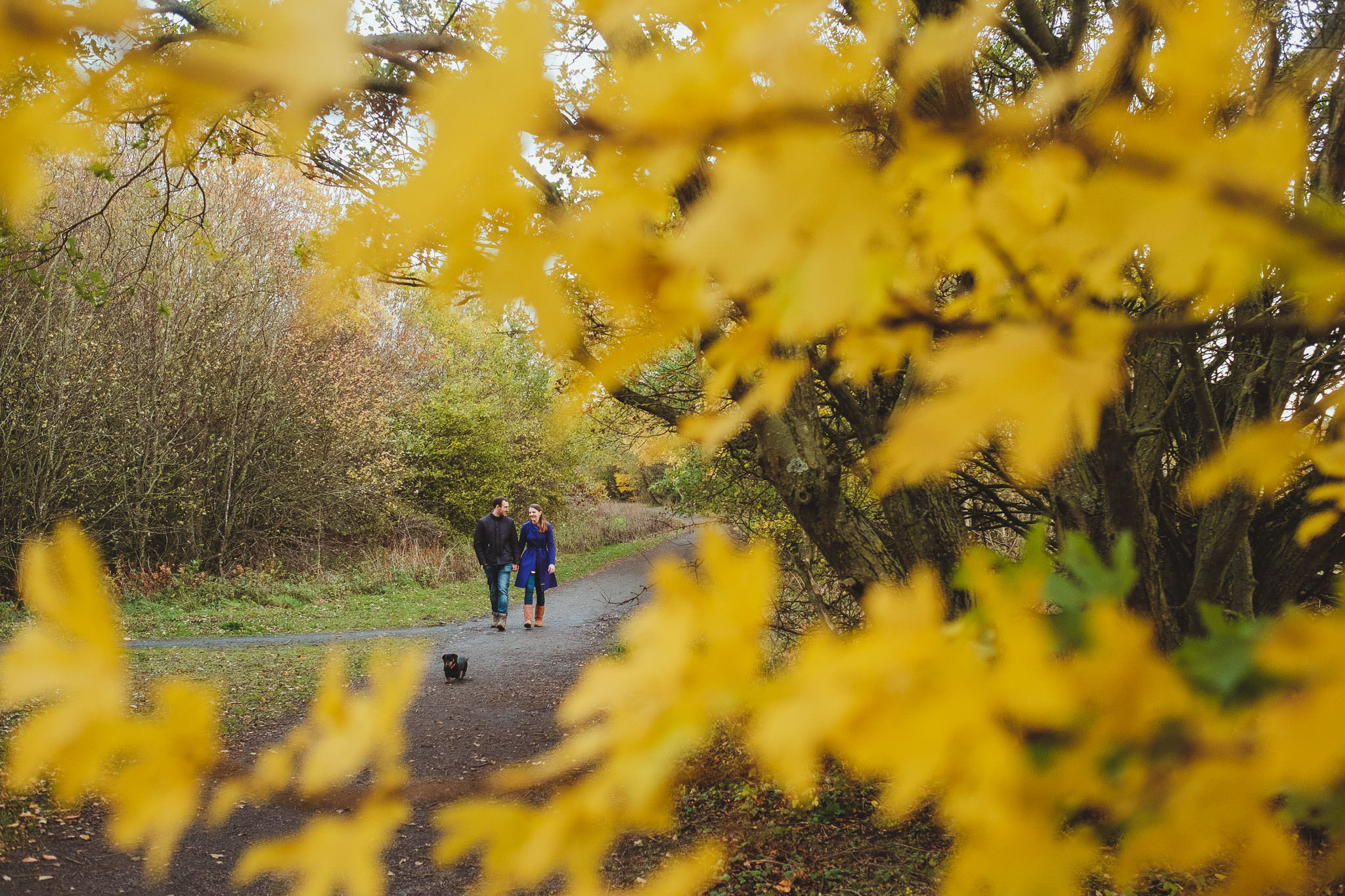 Engaged couple glimpsed through the orange autumn foliage in Newcastle